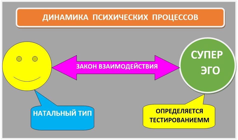 Динамика психических процессов
